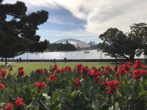 Harbour Bridge view from Botanical Gardens